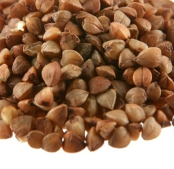 Buckwheat groats up close
